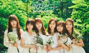 Quiz: Các em út của 7 nhóm nhạc kpop là ai?