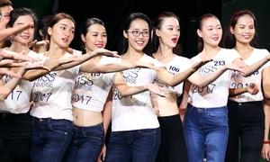 Bão lớn ở Khánh Hòa, bán kết Hoa hậu Hoàn vũ vẫn diễn ra