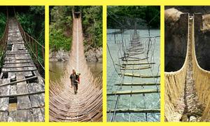 Trắc nghiệm: Bạn thấy cây cầu nào nguy hiểm nhất?