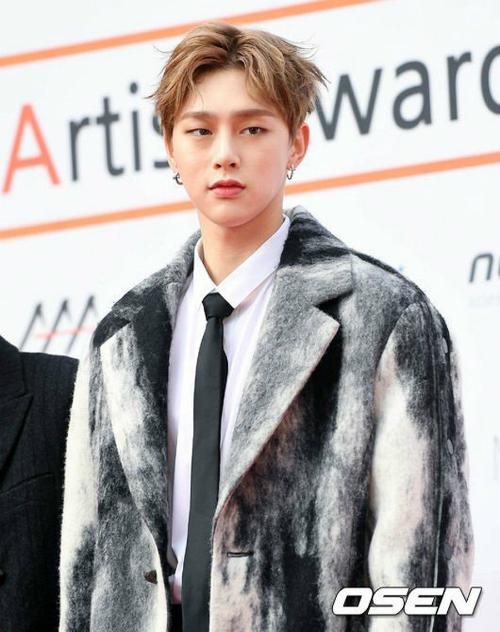 dan-sao-kpop-hung-hau-tren-tham-do-asia-artist-awards-5