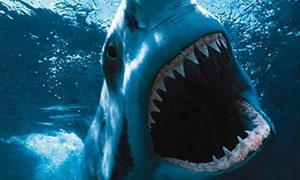 Khán giả khó quên khi lần đầu thấy quái vật biển trong 'Jaws'