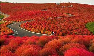 35 địa điểm tuyệt đẹp bạn nên đến một lần trong đời