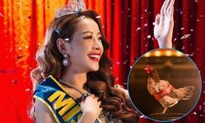 Chi Pu chơi lầy đeo dải băng 'Miss Showbiz' cho gà trong MV mới