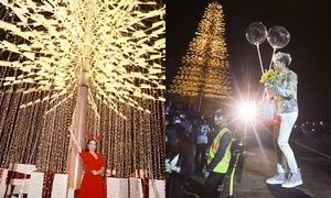 Sao Việt kéo nhau ngắm cây thông Noel cao 30 m ở Đà Nẵng