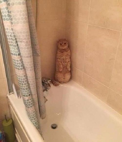 Đây là tôi khi bị bắt đi tắm vào mùa đông.
