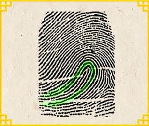 Trắc nghiệm: Biết ngay bạn là người như thế nào qua dấu vân tay