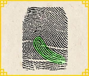 Trắc nghiệm: Biết ngay bạn là người như thế nào qua dấu vân tay - 1