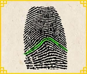Trắc nghiệm: Biết ngay bạn là người như thế nào qua dấu vân tay - 2