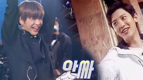 Wanna One nhìn không rời mắt gặp tiền bối yêu thích - 5