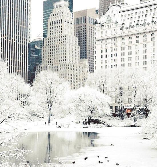 Cả nước Mỹ co ro trong trời giá lạnh vì bom thời tiết - 1