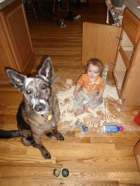 Không phải con, tại bạn ấy mở tủ ra trước mà.