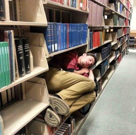 Ngàn lẻ tư thế ngủ bá đạo cần phong thánh - page 2
