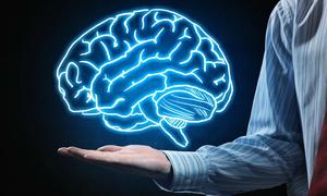 Trắc nghiệm: Vị trí nào trong não bộ của bạn phát triển nhất?