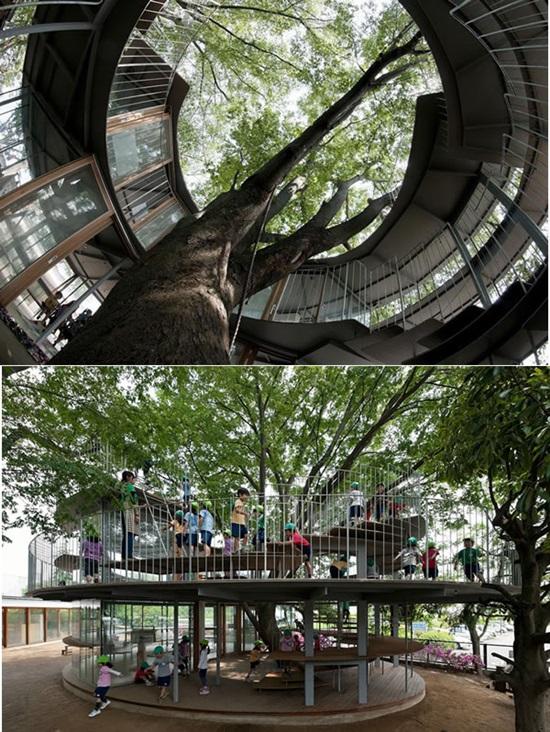 Những công trình độc đáo xây quanh cây lớn - 4