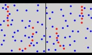 Người có IQ cao sẽ tìm ra thông điệp qua các chấm màu (2)