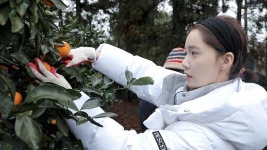 3 idol Hàn nổi tiếng vì chạm vào vật nào, vật đó thành vàng - 4