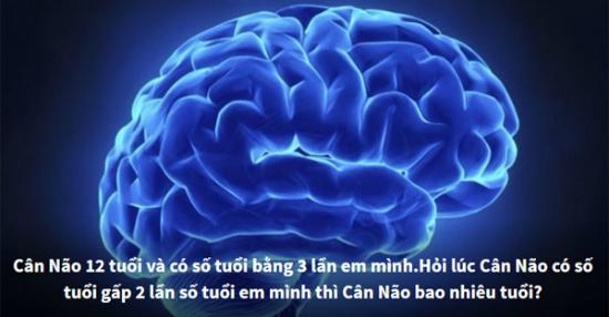 Thử tài 6 câu hỏi logic khiến bạn đau đầu - 4