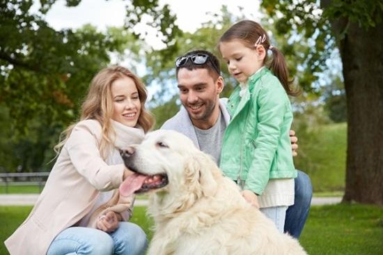 Cẩm nang chọn cún cưng theo sở thích - 1
