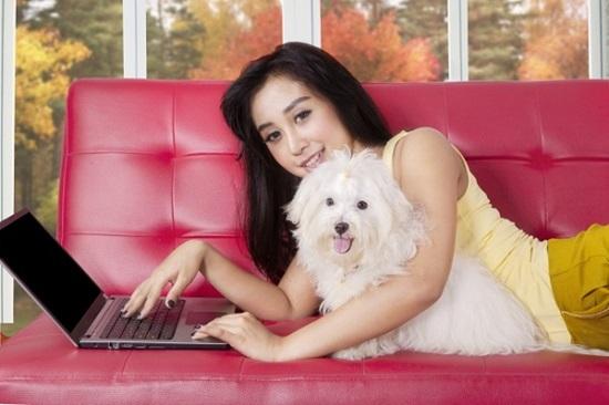 Cẩm nang chọn cún cưng theo sở thích - 3
