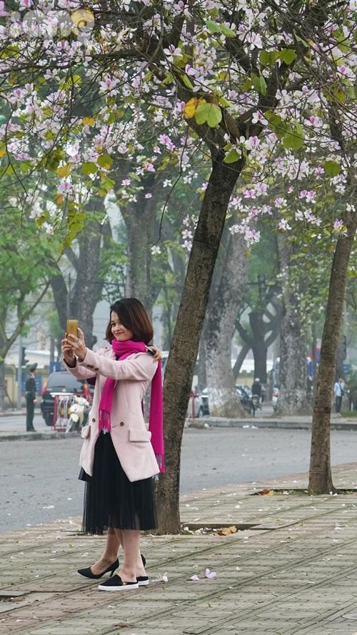 Hà Nội lãng mạn trong mùa hoa ban tím đầu xuân - 6