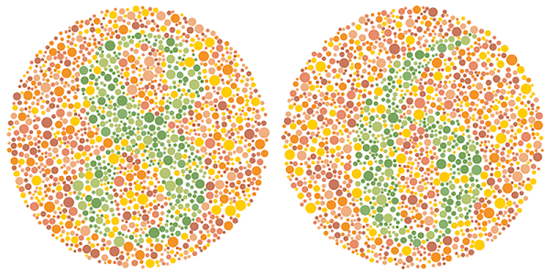 Mắt tinh đoán số trong ảo ảnh màu sắc