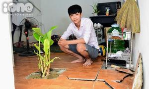 Nam sinh sống chung với bụi chuối mọc trong phòng trọ sau Tết
