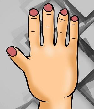 Bói vui: Thuật xem tướng sẽ chỉ rõ bạn là ai qua hình dáng bàn tay - 4