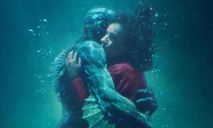 Phim 18+ hay nhất Oscar 2018 bị tố 'chôm chỉa' nội dung