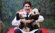 Giờ mới hiểu vì sao người ta thích sống ở Canada