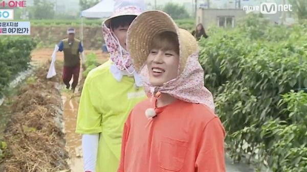 Những idol có thể làm nông dân nếu không thành ca sĩ - 3