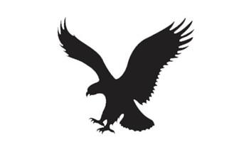 Bạn có nhận ra các logo thương hiệu nổi tiếng này? - 7