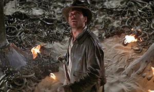 6.000 con rắn được sử dụng cho cảnh phim khiến diễn viên khiếp vía