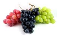 Bạn hiểu gì về các loại hoa quả? - 4
