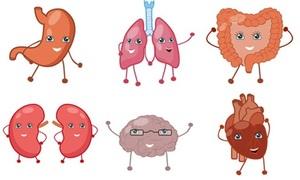 Thử làm bác sĩ đo độ thấu hiểu về cơ thể người