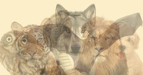 Nhìn trúng tim đen của bạn qua bức hình ảo giác về động vật