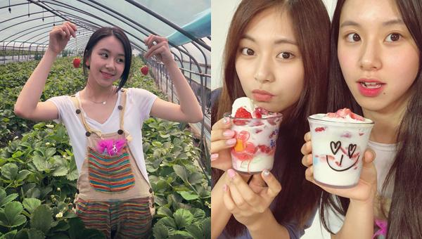 Chae Young (Twice) khoe ảnh đi hái dâu tây tại vườn và được thưởng thức món kem dâu tây ngon lành cùng Tzuyu.