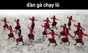 MV 'Đóa hoa hồng' của Chi Pu trở thành cảm hứng chế bất tận