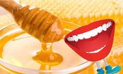 Mật ong và cái miệng cho bạn từ gì?