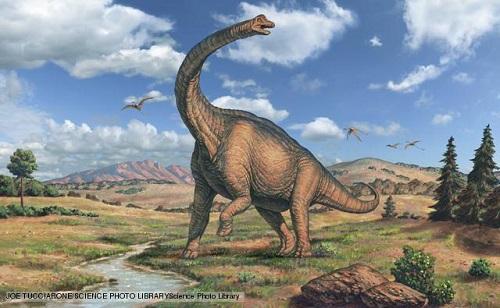 12 chòm sao là hiện thân của loại khủng long nào? - 1