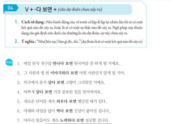 Phần ngữ pháp với những giải thích chi tiết bằng tiếng Việt về cách dùng và các ví dụ.