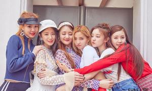 Tân binh vượt mặt Twice, Black Pink trên BXH thương hiệu là ai?
