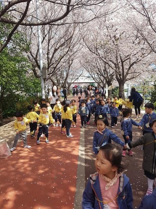 15 sự thật thú vị về đất nước Hàn Quốc có thể bạn chưa biết - 5