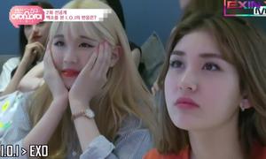 Khi idol Kpop hóa fan girl, fan boy cuồng nhiệt