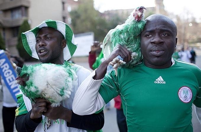 <p> CĐV Nigeria năm nay nhận tin buồn khi bị cấm mang gà sống vào sân vận động World Cup.</p>