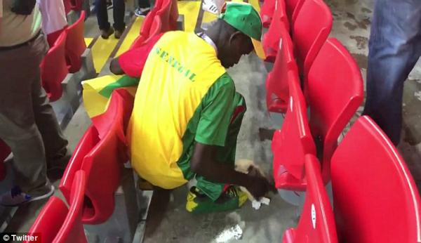 Những người hâm mộ Senegal ở lại sau trận đấu World Cup của họ để dọn sạch một phần sân vận động