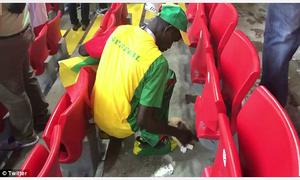 CĐV Senegal và Nhật Bản được khen ngợi vì dọn rác sau trận đấu
