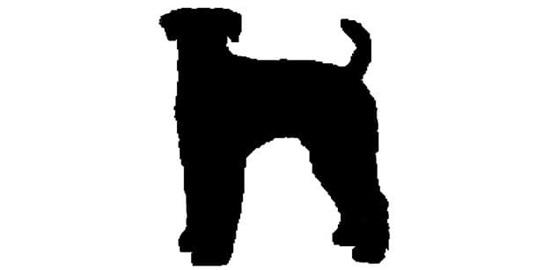 Nhìn bóng cún cưng đoán giống loài - 10