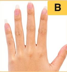 Trắc nghiệm: Vạch trần 3 điều không thể chối cãi về bạn qua hình dáng bàn tay trái - 1
