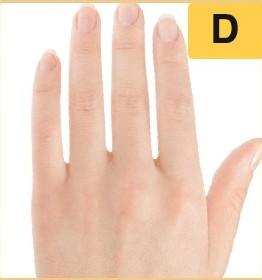 Trắc nghiệm: Vạch trần 3 điều không thể chối cãi về bạn qua hình dáng bàn tay trái - 3