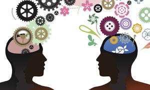 5 câu đố xoắn não, bạn có giải được? (2)